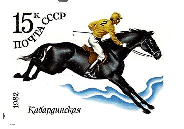 1982_1